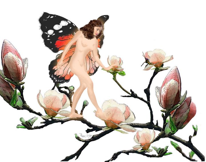 Fairy or Butterfly No 2 - Images by Tannia