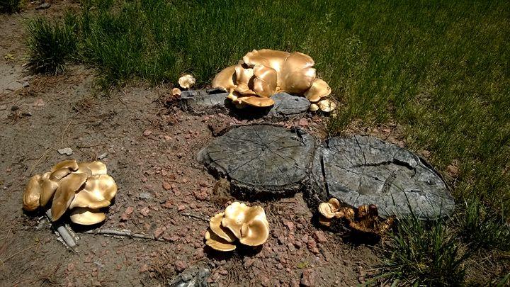 Gross Mushrooms - Assassicactus