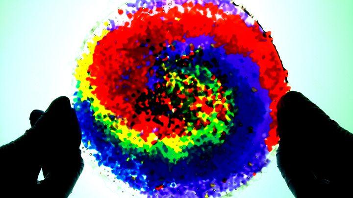 Rainbow Dot Plate - Assassicactus