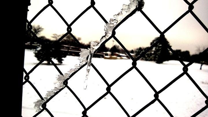 Wind-Blown Ice - Assassicactus