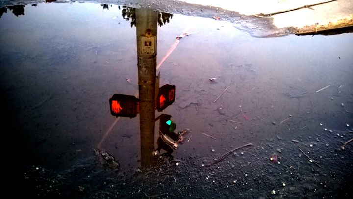 Crosswalk Signal Reflection - Assassicactus