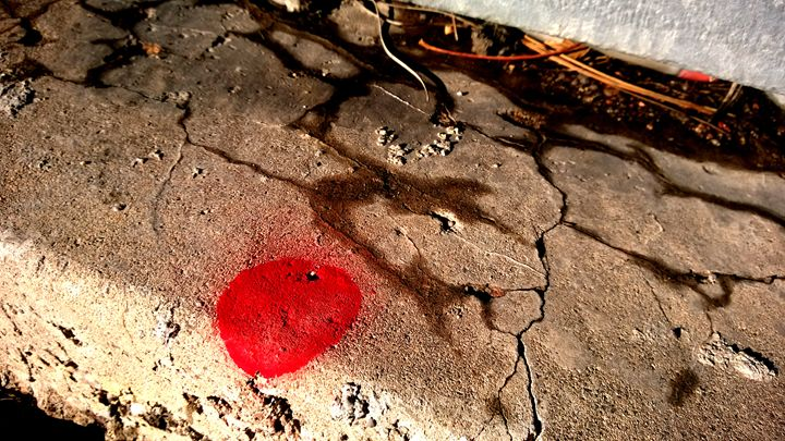 Red Paint Dot - Assassicactus
