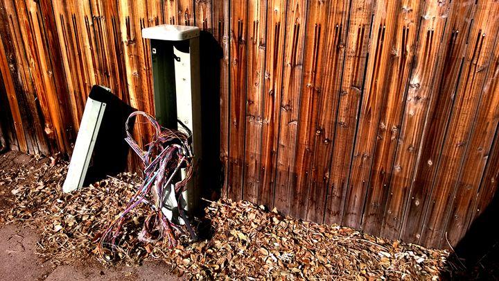 Electrical Box Bowels - Assassicactus