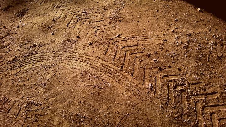 Deep Tire Tracks - Assassicactus