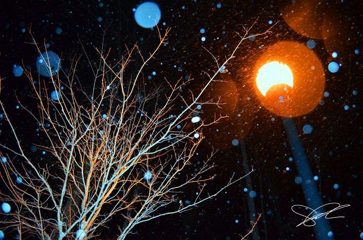 Snow Globe - Artistic Decor