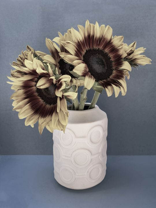 SUNFLOWERS FADE TO GREY - WDPS Gallery