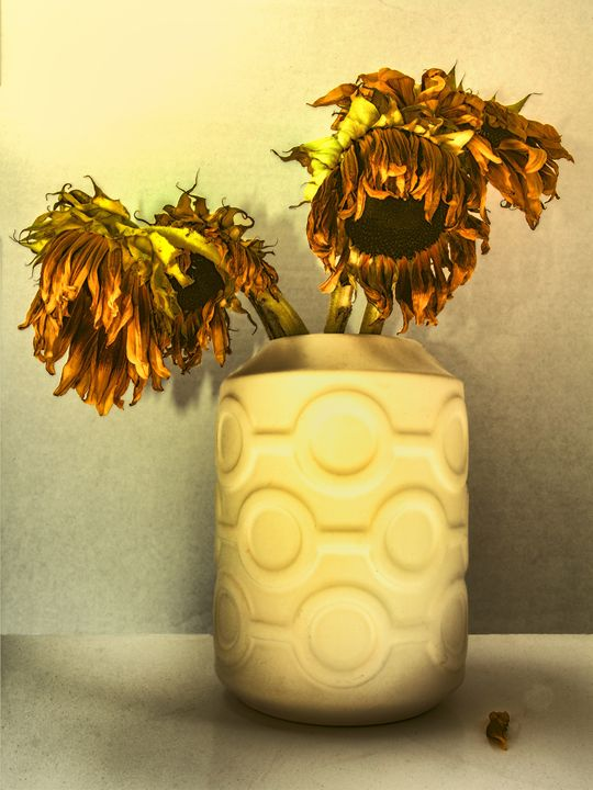 SUNFLOWERS IN CIRCLE VASE YELLOW - WDPS Gallery