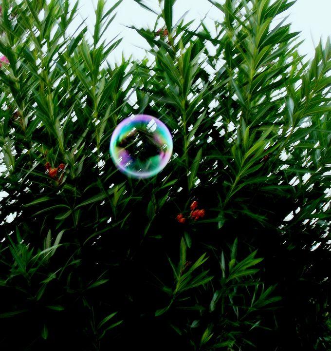 Bubble - Pakokante