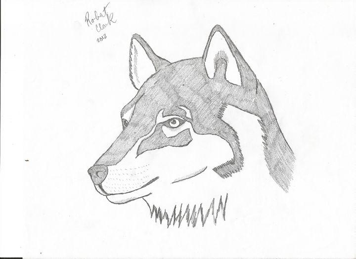 Siberian Husky - Robert Clark