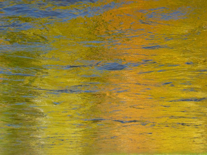 Golden Reflections by Surfclaw 2009 - Alaska Mosaic Photography