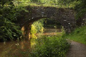 Bridge 113