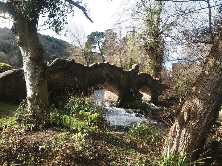 Dunster Castle bridge, Minehead Uk - Bex Art