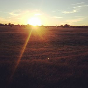 Sunset Haymeadow