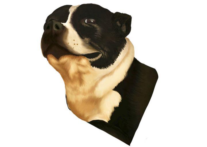 Maisie - Krondor