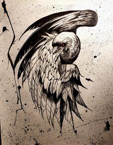 The Dark Raven