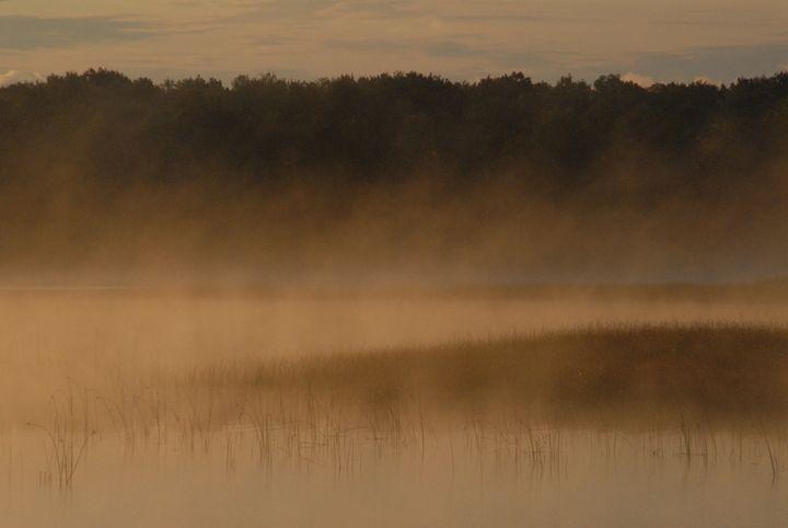 Mist over the Reeds - Darlene Watson