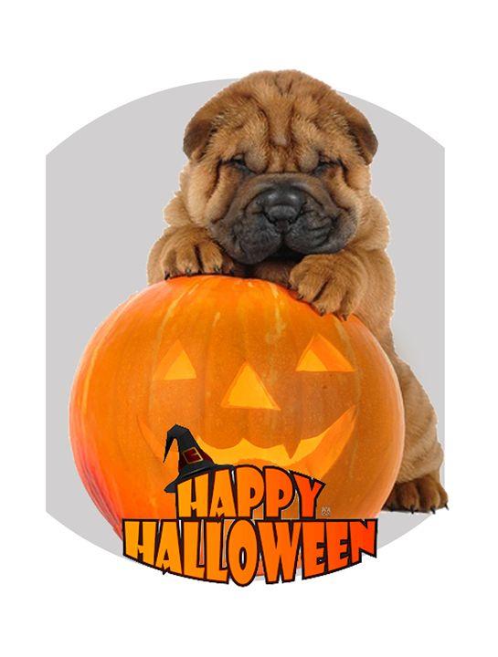 Happy Halloween with Shar Pei Dog - Vanyssa Design