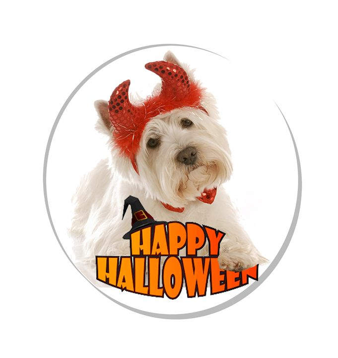 Happy Halloween with White Dog - Vanyssa Design