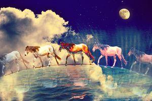 Sea of #horses by #Bizzartino