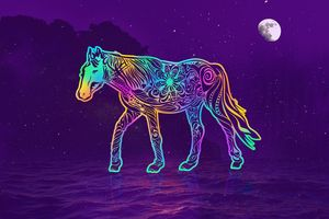 Horse to the #moon by #Bizzartino