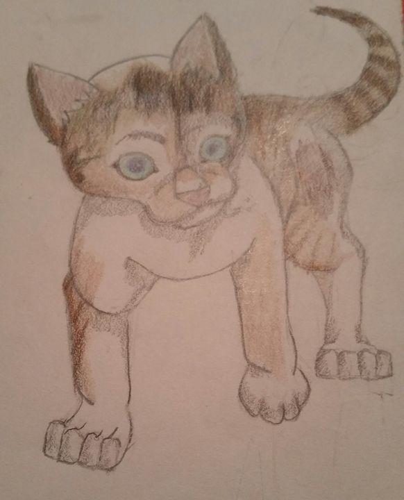 Cat - Agatha
