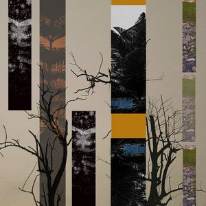 Collage of Trees