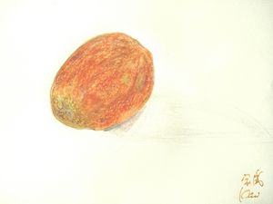 画百香果 家威绘画 How to Draw Passion Fruit
