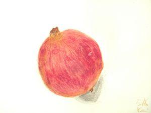 画石榴 家威绘画 How to Draw Promegranate