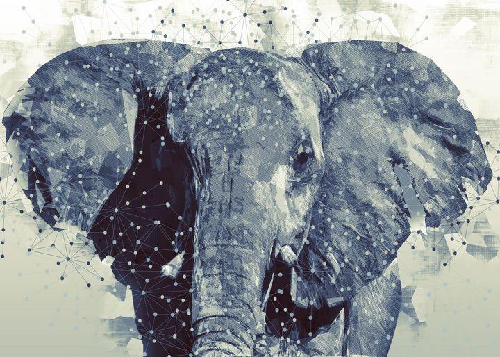 Elephant - TynskiArt