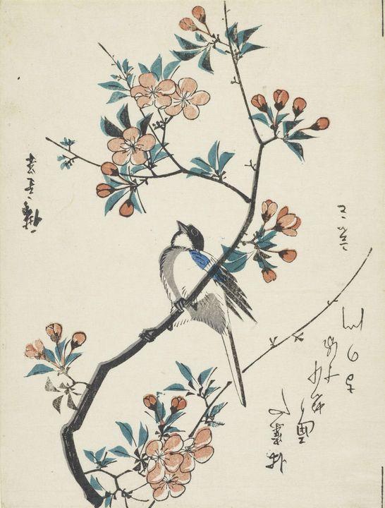 Hiroshige~Aronia and mountain sparro - Treasury Classic