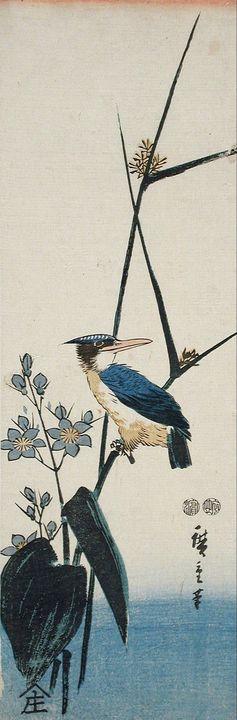 Hiroshige~Kingfisher - Treasury Classic