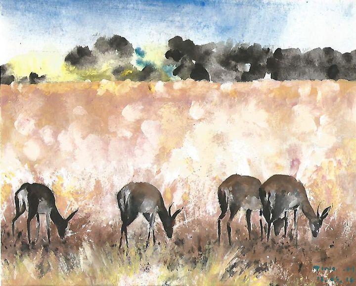 Antelopes Today - tino