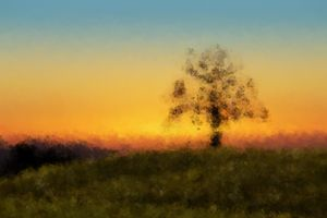 Tree in the Twilight