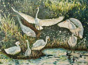 Egret Community