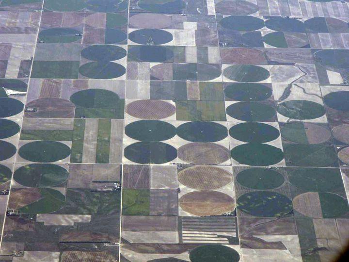 Farmland 2 - DAS