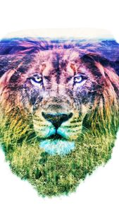 The Lion's Birds Eye