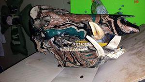 Wild Board Hydro-Swirl Dipped Skull