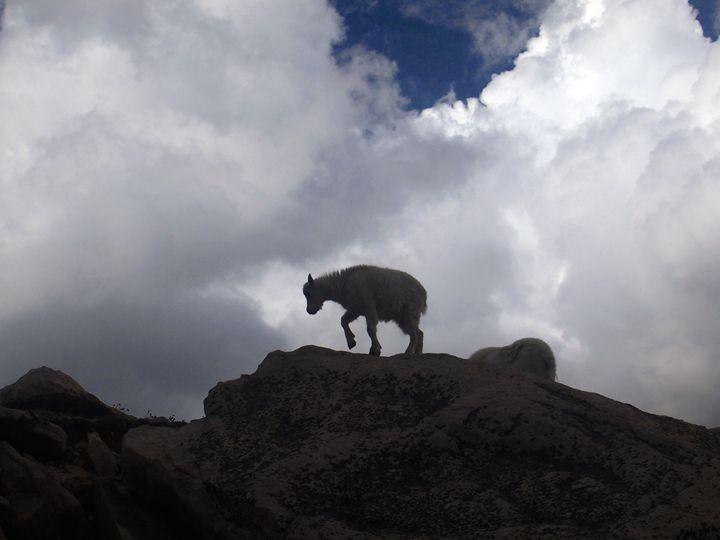On the Mountain - Ben Grogan