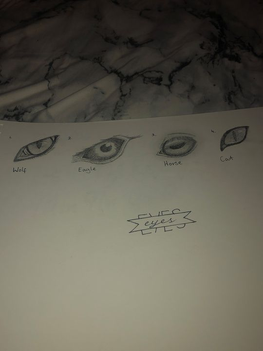 Eye Practice Sketches - Art by Sarah