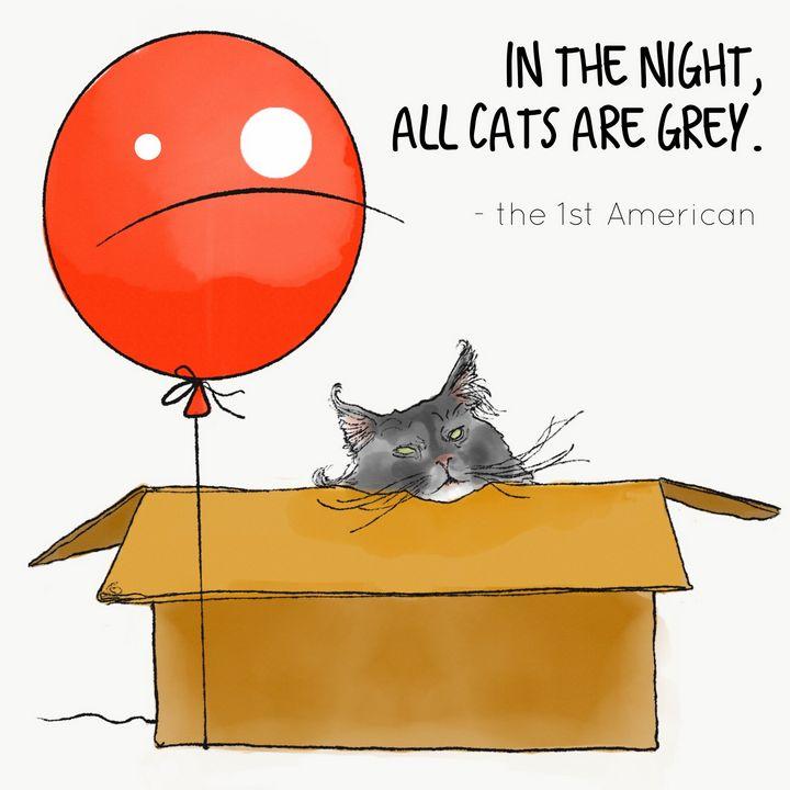 Greycats - Nodicenodice