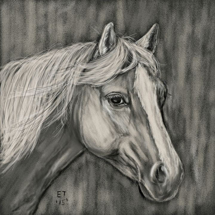 Charcoal Palomino Horse - Ellie Taylor Artist