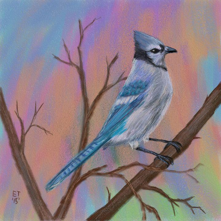 Blue Jay - Ellie Taylor Artist