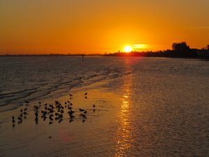 Sunrise on Anna Maria Island - BessTouch Gallery