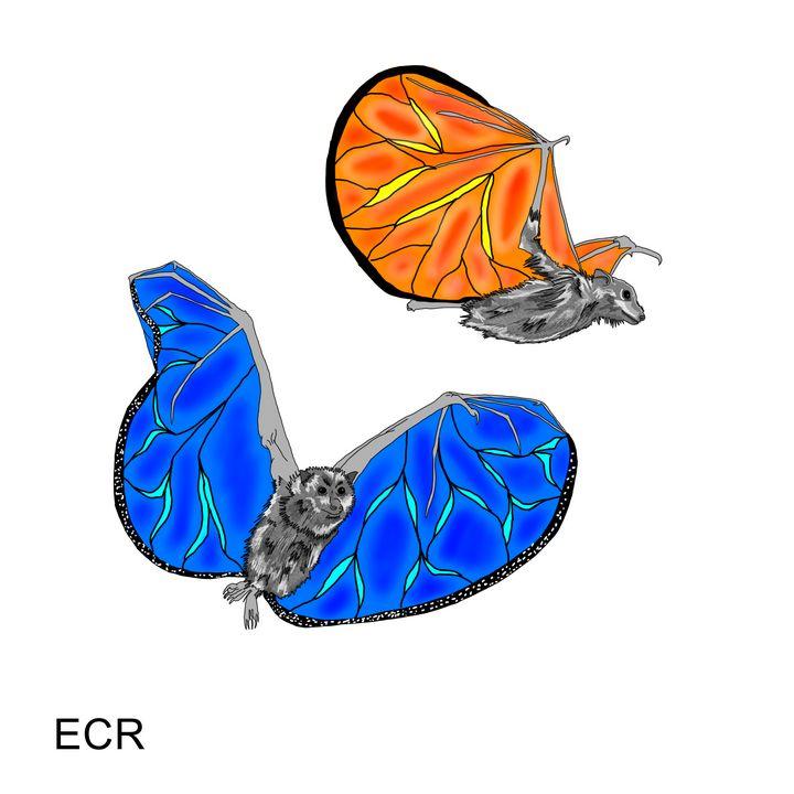 Batterflies - Animated Spirit