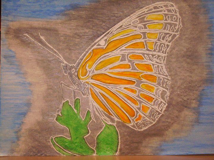 Butterflies - Nighthawks Design