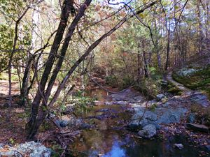 Hot Springs - Artistic Independency