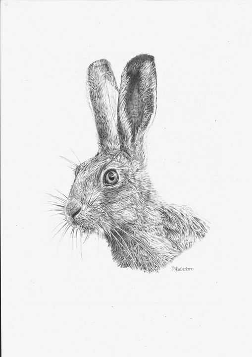 'Hare' Limited Edition Print - Elsa Valentine