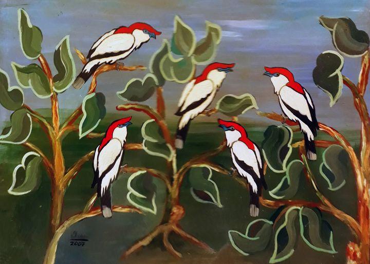 Cardinals - Isar Valdetaro