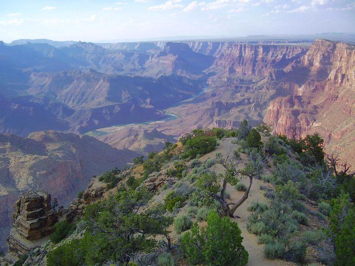 Grand Canyon Bent Tree - CJD