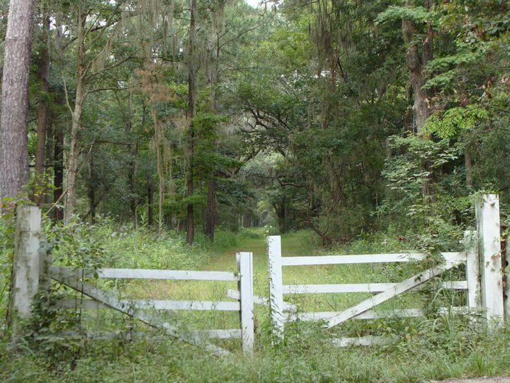 The Fence - CJD
